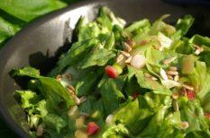 egészség, nyár, recept, rukkola, saláta, vitamin, zöldség