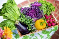 dió, elhízás, fehérjék, gyümölcs, helyes táplálkozás, magvak, rostok, zöldség