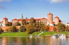 autóbusz, fesztivál, kirándulás, Krakkó, utazás, Wawel