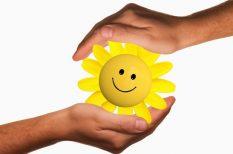 energiatakarékosság, hőszigetelés, környezetvédelem, lakás, otthon, pályázat