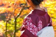 hagyomány, japán, kert, levélnézés, Momiji, ősz, park, tradíció