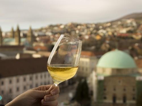 Pécs és bora, Kép: Via Gasztronómia