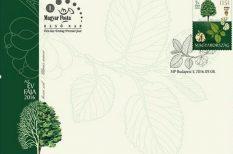 az év fája, Elekes Attila, környezetvédelem, Magyar Posta, Országos Erdészeti Egyesület, szil, új bélyeg