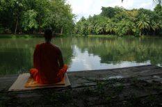 egészség, hozzáértés, kísérlet, lélek, meditáció, nyugalom, vizsgálat