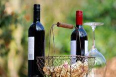 bor, márton nap, új bor