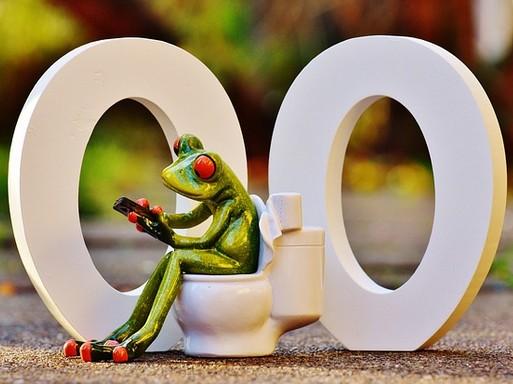 Béka a WC-n, Kép: pixabay
