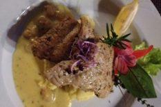 curry, harcsa, pápa, rákragu, Villa Classica