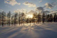 advent, angyal, harmadik gyertya, karácsony, önismeret, öröm, várakozás