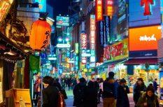 biztonság, japán, nő, rendőrség, turizmus, utazás