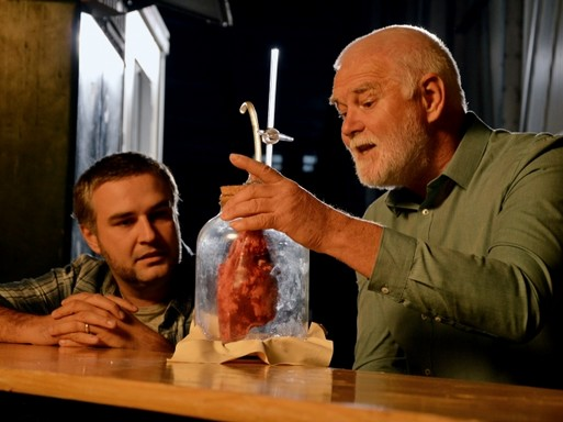 Brutális biológia, Kép: Spektrum