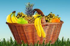 gyümölcscukor, immunrendszer, rost, Szász Máté, táplálék, vitamin
