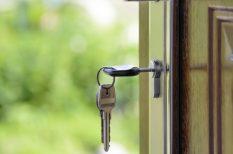 albérlet, befektetés, ingatlan, kiadás, szempontok