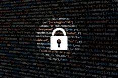 bűncselekmény, internet, internet biztonság, IT védelem, photoshop