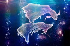 asztrológia, bak, érzelmek, halak jegy, horoszkóp, Nyilas, párkacsolat, személyiségjegyek, vízöntő