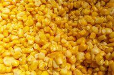 csirke, gyors vacsora, kókusztej, kukorica, zöldborsó