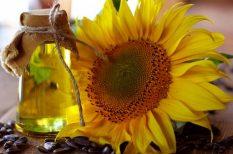 egészség, konyhai tanács, növényi olajok, sütés