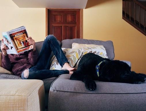 Fiatal otthon újságot olvas kutyával, Kép: pixabay
