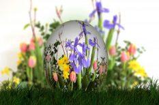 húsvét, készülődés, vendégség