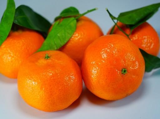 Mandarin, Kép: pixabay