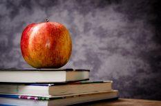 egészséges, iskola, Magyar Dietetikusok Országos Szövetsége, táplálkozás