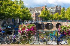 Amszterdam, hollandia, kerékpározás, kirándulás, koncertek, tánc, tenger, utazás