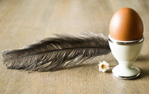 A sonka legjobb barátja a tojás, Kép: pixabay.com
