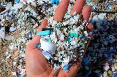 környezetszennyezés, környezetvédelem, mikroműanyagok, tápláléklánc, új káros anyag, vizsgálat