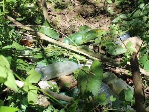 PET-palackok a Tisza árterében, Kép: laboratorium.hu
