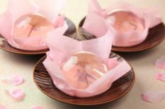 cseresznyevirágzás, Hanami, japán, sakura, tradíció, üzlet, világmárkák