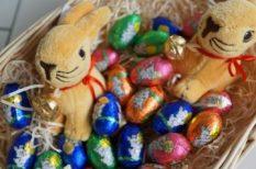 ajándék, hagyományok, húsvét, játék, locsolkodás, nyúl, tavasz
