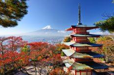 japán, költségek, különleges alkalom, nevezetességek, nyaralás, sakura, sushi, utazás