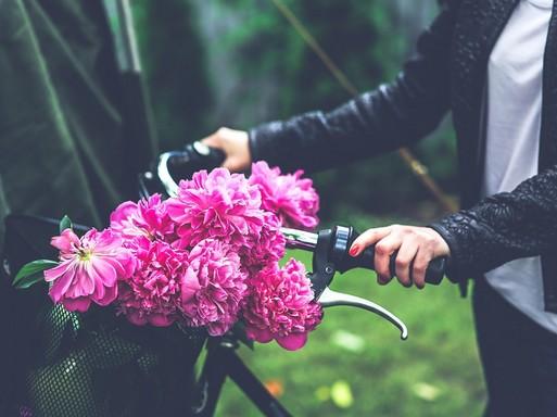 Kerékpár kormányán virág, Kép: pixabay
