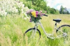 izület, kerékpár, közlekedés, mozgás, sport