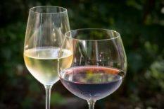 balaton, bor, fesztivál, hétvégi program, június, könyv, zene