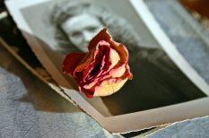 hagyományok, kiállítás, lengyel-magyar barátság, szerelem, szokások