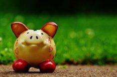 anya, anyagi támogatás, család, közoktatás, megtakarítás, pénzügy, zsebpénz