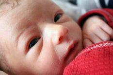 Első Ezer Nap Program, etetés, gyerekkor, szívroham, túlsúly, WHO