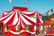 biztosítási rendszer, cirkusz, Európai Parlament, Michelin-csillag, művészet, utazó cirkusz