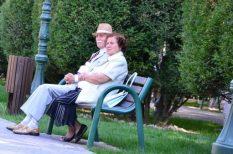 életjáradék, eltartási szerződés, felmérés, idős kor, idősek otthona, nyugdíjas, örökösödés
