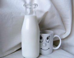 cukorbeteg, növényi tej, szénhidrát, tej, tejcukor