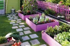 kert, növények, otthon, praktikum, térkő, tervezés