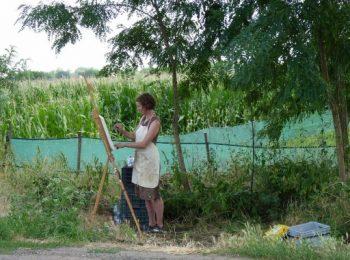 festmény, film, Ludwig Múzeum, mezőgazdaság, művészet, projekt