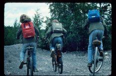 divat, hátizsák, iskola, kényelem, művészet, praktikusság, sport, táska, védett tárgy