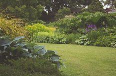 felújítás, kert, költségek, otthon, tervezés