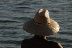 nyár, pajzsmirigy, terápia, változtatás