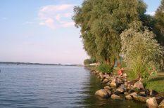 áremelkedés, ingatlan, Körösök, nyaraló, Tisza-tó, üdülő, vásárlás