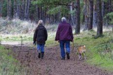 háziorvos, idős ember, kutya, kutyatartás, mozgás, séta