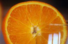 citrom, koktél, narancs, nyár