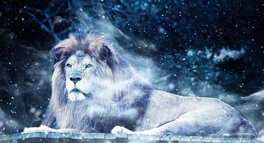 Az oroszlán őszinte jegy...Kép: Pixabay