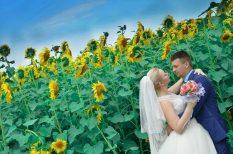 divat, esküvő, készpénz, nászajándék, sorsjegy, utalvány